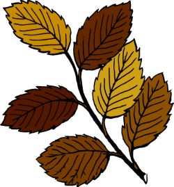 http://openclipart.org/image/90px/svg_to_png/23546/tom_Autumn_leaves_on_branch.png